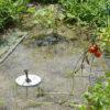 太陽光噴水